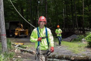 Emergency Tree Removal - Ulster County